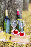 Autumn picnic with wine bottles , glasses and book  -romantic date Stock Images