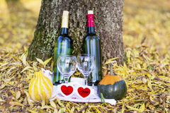 Autumn picnic with wine bottles and glasses - romantic date Stock Images