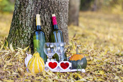 Autumn picnic with wine bottles and glasses - romantic date. Romantic autumn picnic with wine bottles , glasses and pumpkins for decoration royalty free stock images