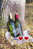 Autumn picnic with wine bottles and glasses -romantic date Stock Photography