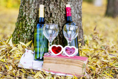 Autumn picnic with wine bottles and glasses -romantic date Stock Photo