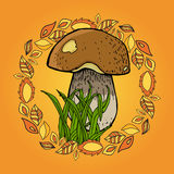 Autumn picture with mushroom, grass and leafs.  Royalty Free Stock Image