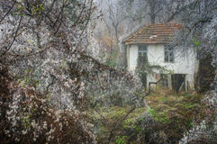 Autumn picture with an old house Stock Photography