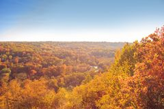 Autumn picturesque landscape with colorful forrest stock photography