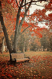 Autumn picturesque landscape in colorful tones Stock Photos