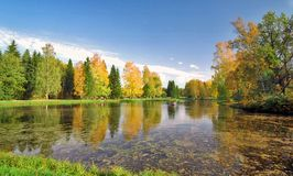 Autumn picturesque pond Stock Images