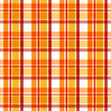 Autumn plaid Stock Image