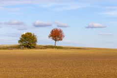 Autumn Plain Landscape Royalty-vrije Stock Foto