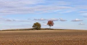 Autumn Plain Landscape Stock Photography