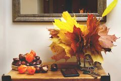 Autumn plant decorations in interior. stock photography