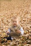 Autumn play Royalty Free Stock Photo