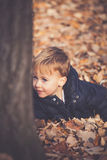 Autumn play in  leaves Royalty Free Stock Photos