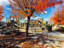Autumn play royalty free stock photography