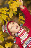 Autumn playing Royalty Free Stock Photography