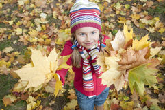 Autumn playing Royalty Free Stock Image