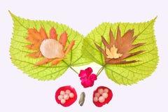 Autumn pleasure Stock Images