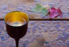 Autumn pleasures Stock Image