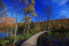 Autumn in Plitvice Royalty Free Stock Images