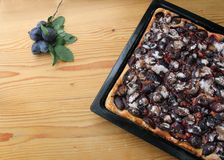 Autumn Plum Pastry Pie imagem de stock royalty free
