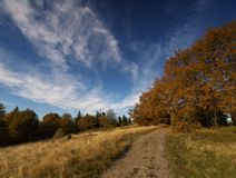 Autumn in Poland Royalty Free Stock Photo