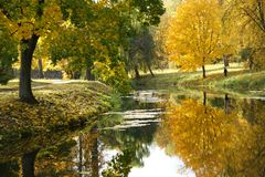 Autumn pond. Royalty Free Stock Photo