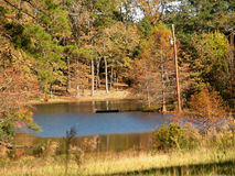 Autumn Pond. Pond in autumn depicts colorful foilage Stock Photo