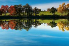 Autumn pond. Behind sunny weather Royalty Free Stock Photo