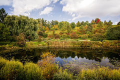 Autumn Pond royaltyfri foto