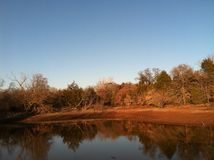 Autumn Pond 01 Foto de Stock