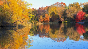 Autumn on the Pond in Central Park Royalty Free Stock Photography