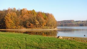 Autumn at the pond Royalty Free Stock Images