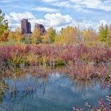 Autumn Pond Landscape lizenzfreie stockfotografie