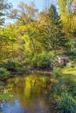 Autumn Pond Landscape Stock Images