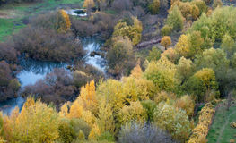 Autumn pond. Nature autumn beautiful pond and trees in gold Stock Photos