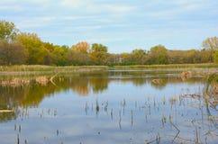 Autumn Pond Overlook Fotografia Stock