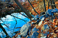 An Autumn Pond. A small Autumn Pond surrounded by rocks, colourful leaves and water Stock Photos