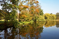 Autumn pond. Royalty Free Stock Images