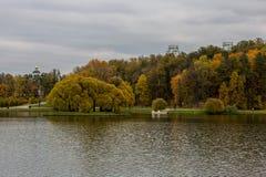 Autumn pond  Stock Image
