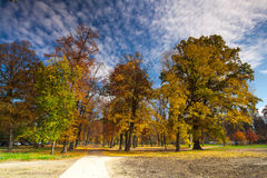 Autumn in the popular park Stromovka in Prague Royalty Free Stock Image