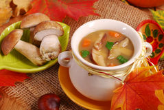 Autumn porcini mushrooms soup Royalty Free Stock Image