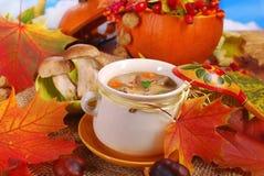 Autumn porcini mushrooms soup Royalty Free Stock Image