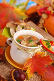 Autumn porcini mushrooms soup Stock Images