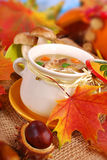 Autumn porcini mushrooms soup Royalty Free Stock Images
