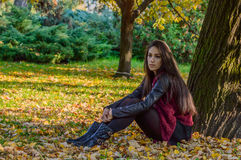 Autumn portait, lovely girl. Photo of a beautiful girl in autumn Royalty Free Stock Photos