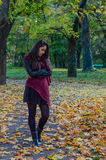 Autumn portait, lovely girl. Photo of a beautiful girl in autumn Stock Images