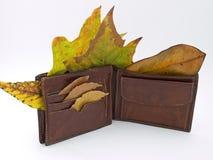 autumn portfel. zdjęcia royalty free