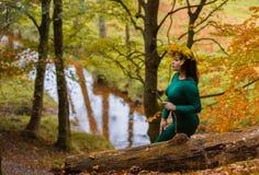 Autumn Portrait Fotos de Stock Royalty Free