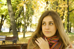 Autumn Portrait. Of a beautiful young woman against yellow leaves. The girl was wrapped in a scarf stock photo