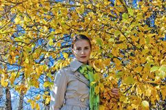 Autumn portrait 2 Royalty Free Stock Photo