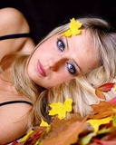 Autumn portrait. Stock Photos